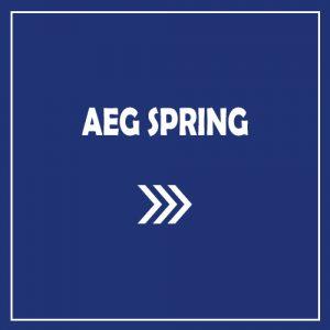 AEG SPRING
